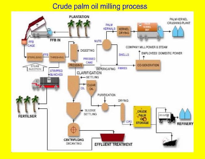 Oil Crude: Oil Crude Types